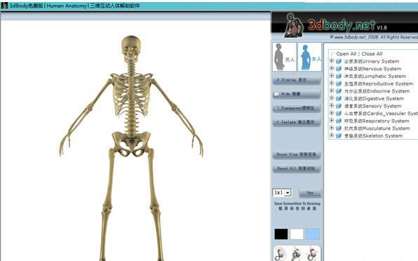 3DBody解剖电脑免费版