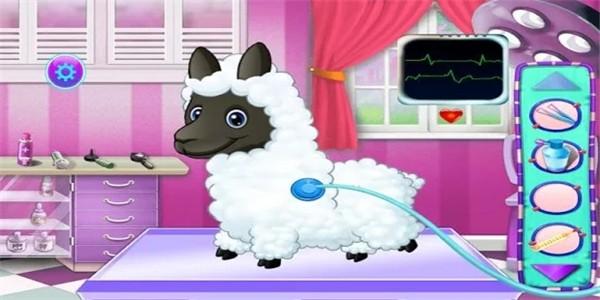 羊驼宠物护理下载