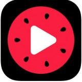 西瓜视频官方版